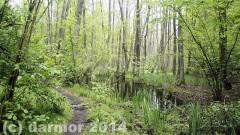 wiosna_14_023