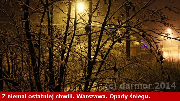 Pierwszy śnieg w Warszawie - 25.XII.2014