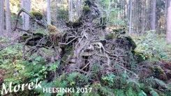 helsinki_2017_030