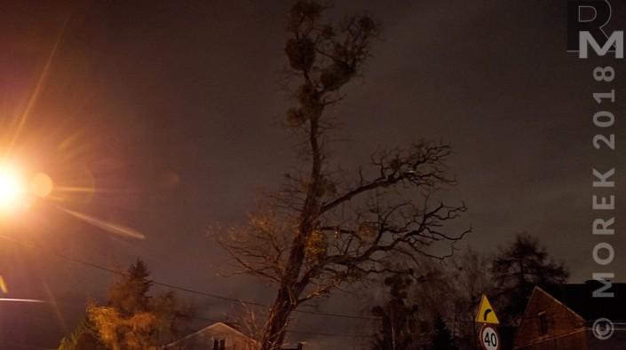 Wólka nocą - samotne drzewo. Kto wie gdzie ;)