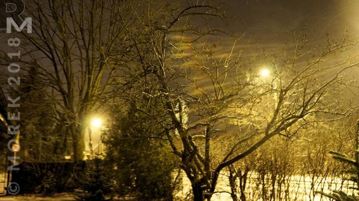 Wólka nocą - w świetle latarni i pośród cieni drzew.